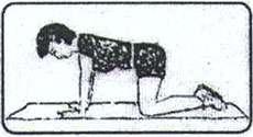 Diz Baş Egzersizi